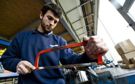Mercado laboral: la era de los profesionales y técnicos